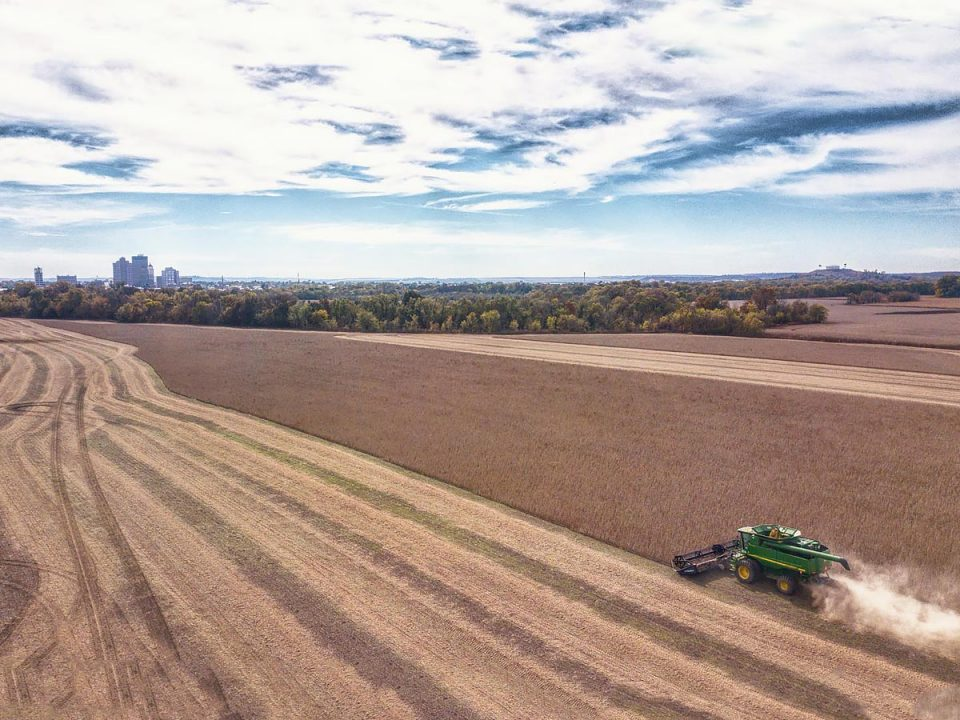 Aerial view of the 2019 harvest on Snelson Farms.