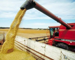 2000 – China becomes the largest single-country purchaser of U.S. soybeans
