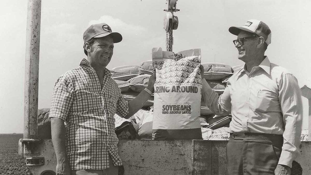 Prentiss Cunningham (left) and his father Buck Cunningham (right) are using one of the newer varieties on most of their 340 acres of soybeans in 1980. They also grow certified seed for the dealer who is headquartered in nearby Plainview, Texas.